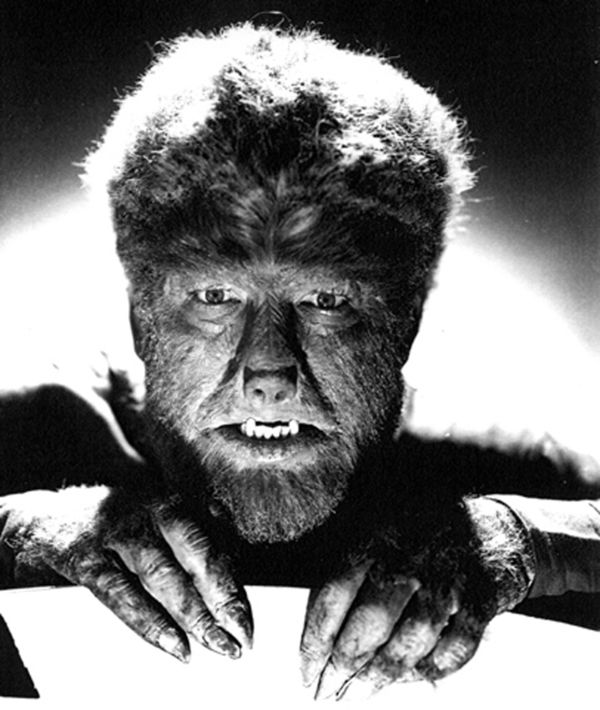 Snout, claws, fangs, and more than enough hair to make Lon Chaney Jr the wolf man.